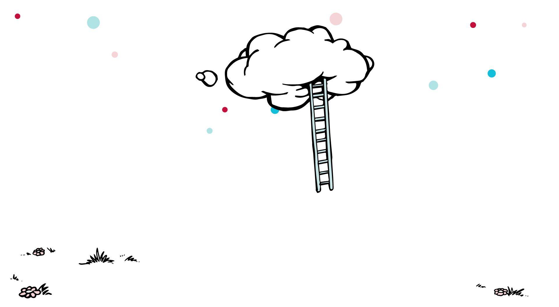 Mr Maria ladder wolk