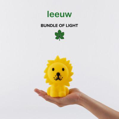 Leeuw Bundle of Light