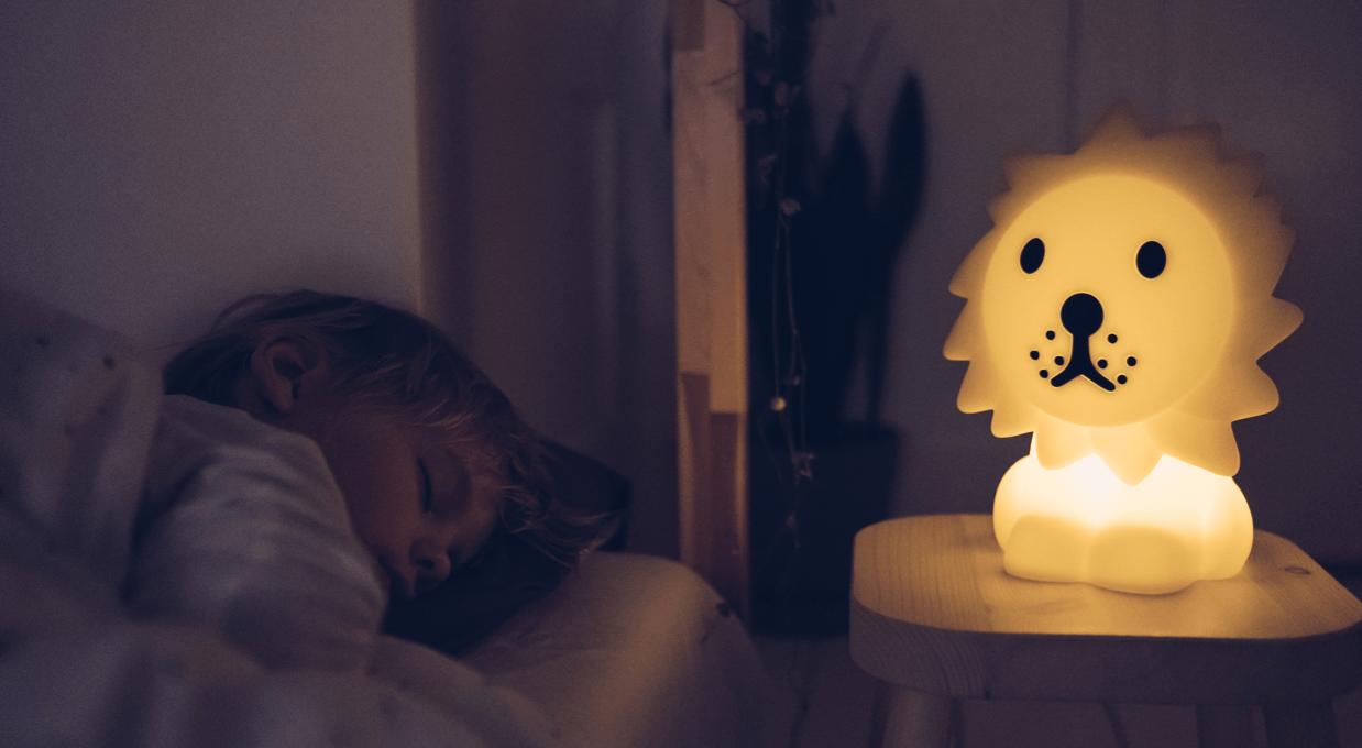 Leeuw Eerste Licht door Mr Maria als Nachtlamp